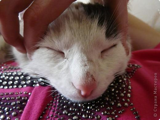 он спокойно спал..... фото 9