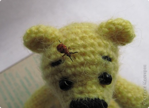Если есть солнечные зайчики, то почему бы не быть солнечным мишкам?))))) фото 5