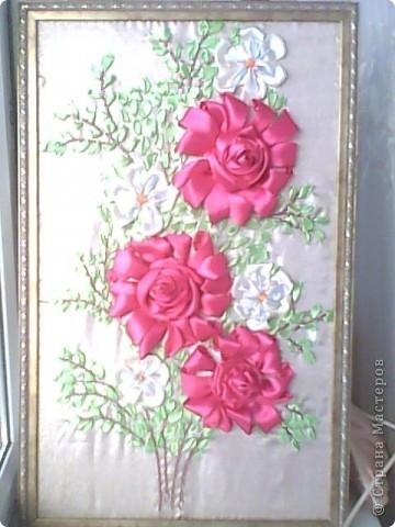 Бархатние рози