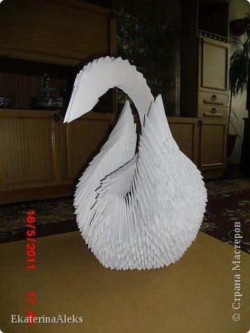 Модульное оригами моя первая работа фото 2