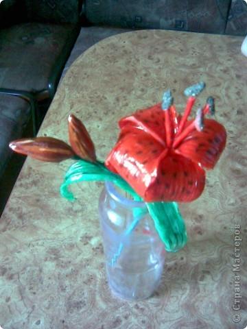 Вот такую лилию я слепила на днях.Мама сказала что это тигровая порода))) фото 2