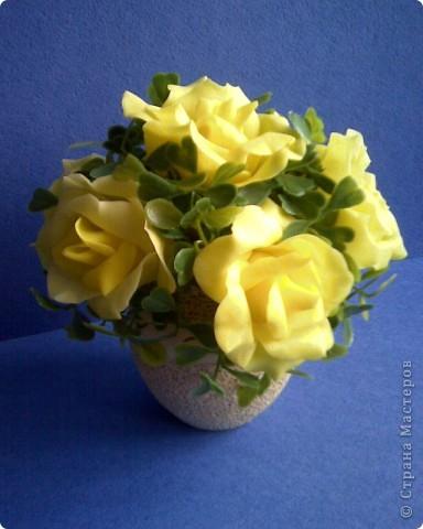 желтые розы фото 7