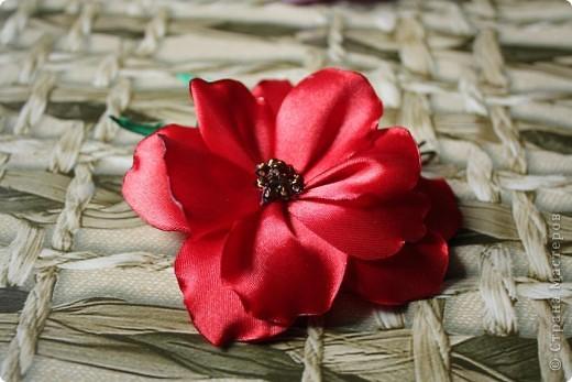 Красный цветок на невидимке. фото 1