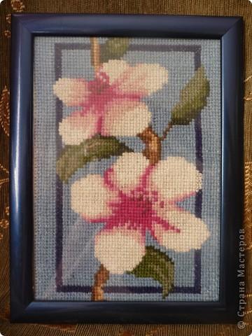 вышивка крестом цветы фото 3