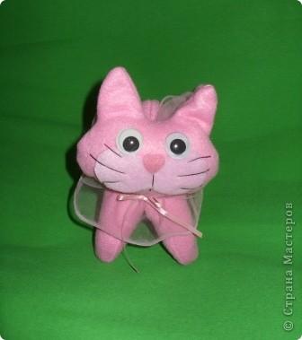 Розовая кошечка фото 2