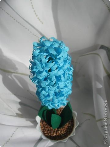 Долго не могла решиться сделать гиацинт- пугало большое количество мелких цветков.Но все же собралась с духом и через два часа появился он: фото 3