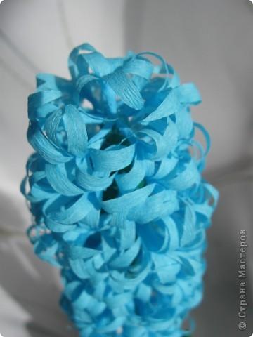 Долго не могла решиться сделать гиацинт- пугало большое количество мелких цветков.Но все же собралась с духом и через два часа появился он: фото 5