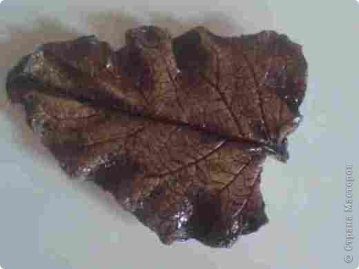 Это мой первый гипсовый листочек. Подскажите какими красками его лучше покрыть чтоб выглядел более натуральным. Материал - гипс. фото 3