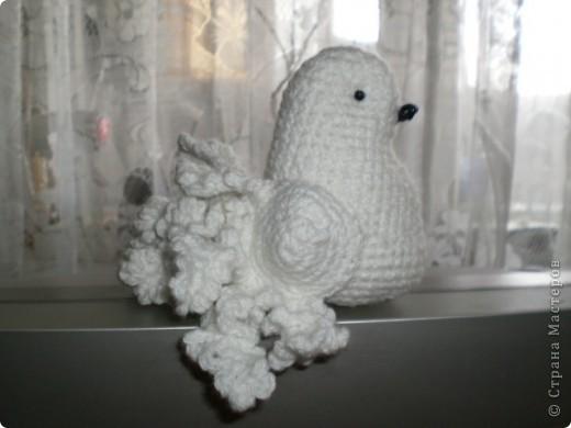 Игрушка Вязание голубь Нитки