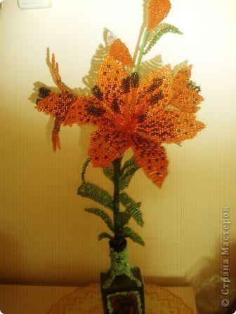тигровая лилия Бисер фото