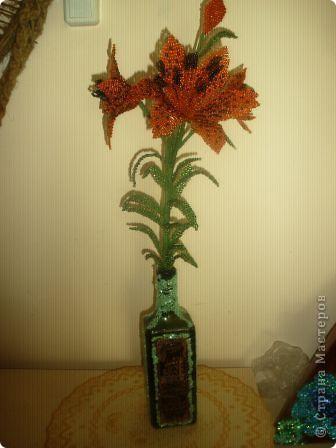 тигровая лилия фото 1