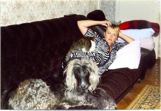 Спокойных снов тебе, собака! фото 3