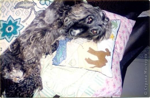 Спокойных снов тебе, собака! фото 1