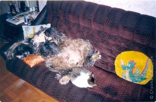 Спокойных снов тебе, собака! фото 9