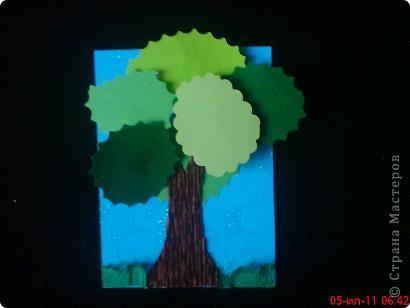 Вот такие выросли деревья фото 7