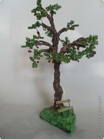 Денюжковое деревце фото 3