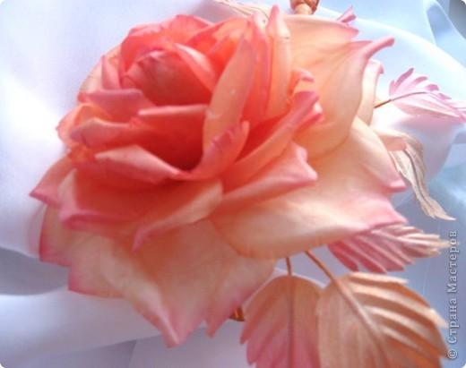 """Роза """"Чайно - гибридная"""" фото 1"""