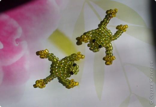 Лягушатки фото 2