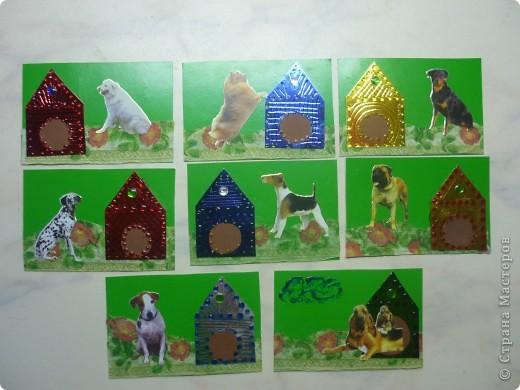 Всем собачкам сделали будочки! фото 1
