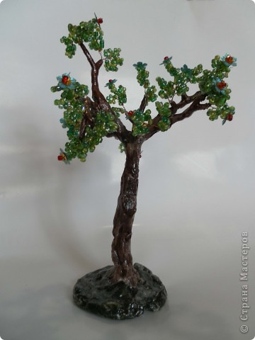 Денюжковое деревце фото 5