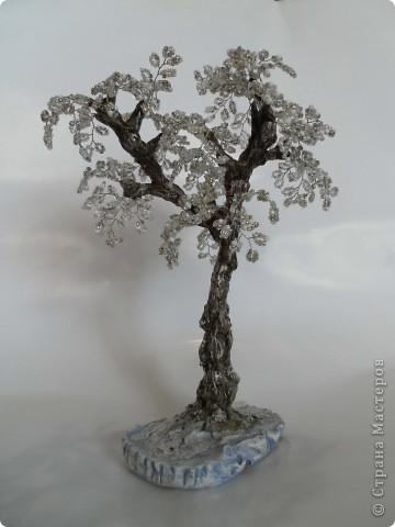 Денюжковое деревце фото 7