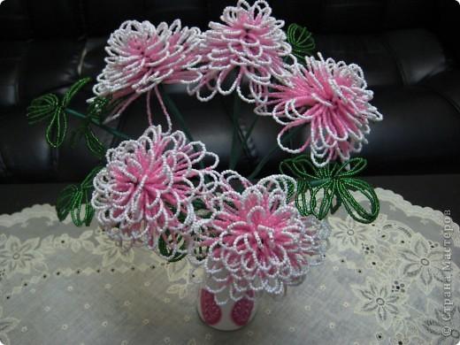 Розовая хризантема Бисер