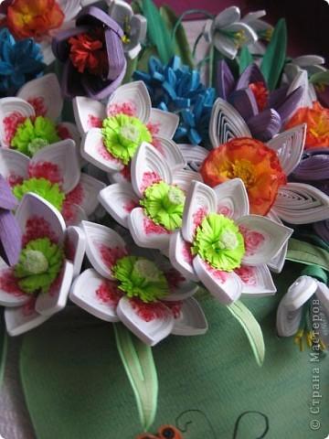 На дворе в разгаре лето, а у меня расцвела охапка весенних цветов. фото 7