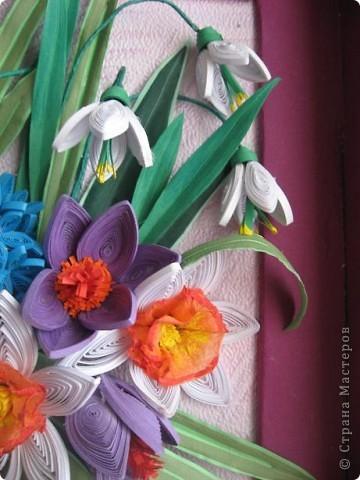 На дворе в разгаре лето, а у меня расцвела охапка весенних цветов. фото 8