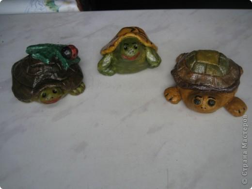 Первая черепашка, конечно же, получилась лучше, но эти тоже симпатичные