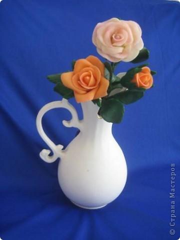 прибавила новые розы фото 20