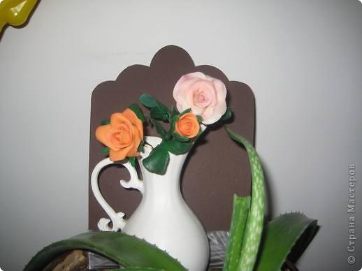 прибавила новые розы фото 3