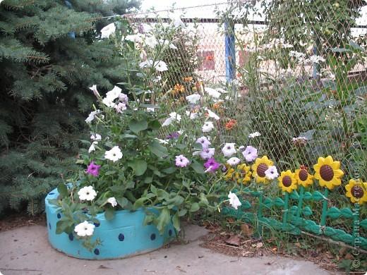 Приглашаю вас прогуляться по моему двору. Я очень люблю цветы .. Цветы растут у меня везде, где есть свободный кусочек земли. фото 7
