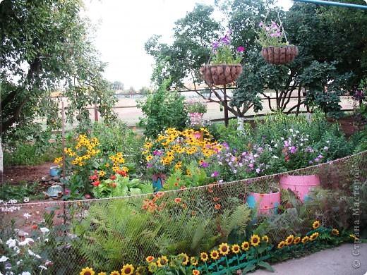 Приглашаю вас прогуляться по моему двору. Я очень люблю цветы .. Цветы растут у меня везде, где есть свободный кусочек земли. фото 3