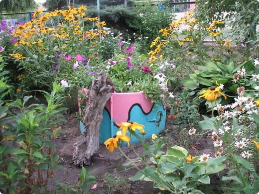 Приглашаю вас прогуляться по моему двору. Я очень люблю цветы .. Цветы растут у меня везде, где есть свободный кусочек земли. фото 4