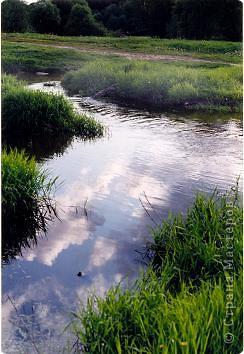 Сосны на обрыве.Весна. фото 9