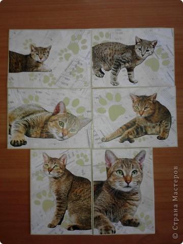 ATC *Music Cats* (без обмена) фото 1