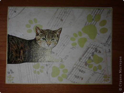 ATC *Music Cats* (без обмена) фото 2