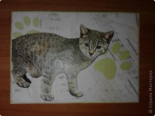 ATC *Music Cats* (без обмена) фото 3