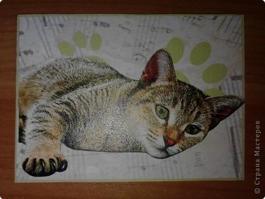 ATC *Music Cats* (без обмена) фото 4