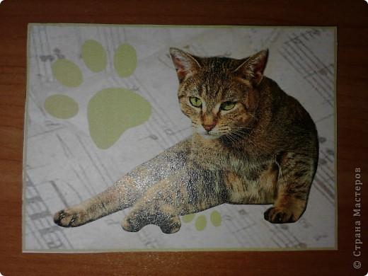ATC *Music Cats* (без обмена) фото 5