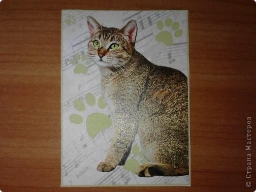 ATC *Music Cats* (без обмена) фото 6