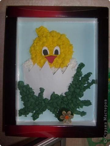 цыпленок фото 1