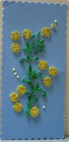 очередные желтые цветочки фото 1