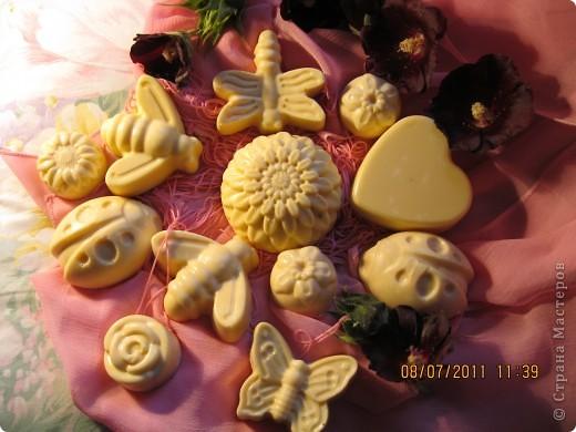 Мыльные букашки и цветы из детского мыла.  фото 1