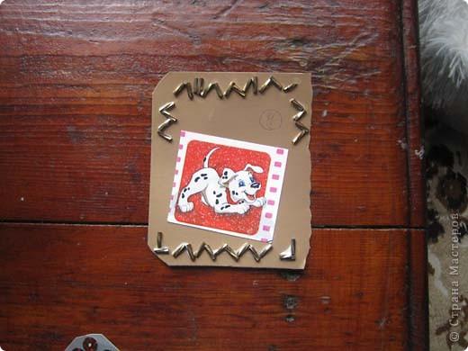 Маи собачки. =) фото 5