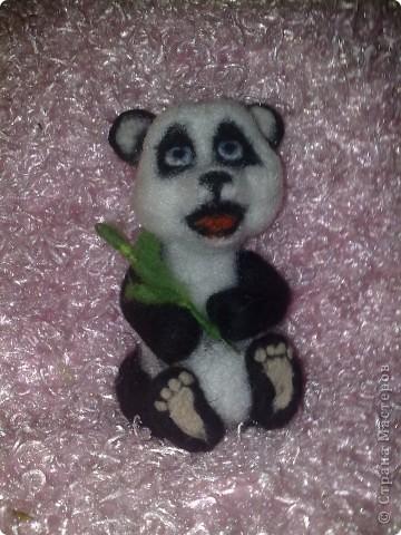 жила была панда Маруся  фото 1