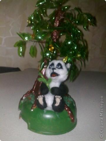жила была панда Маруся  фото 5