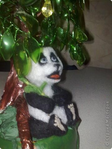 жила была панда Маруся  фото 7