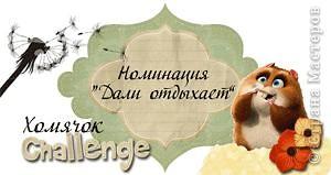 """УРА! На Хомячке Challenge нам присудили номинацию """"Дали отдыхает""""! фото 4"""