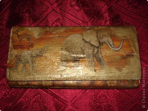 Вид спереди (слоны) фото 1